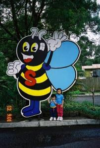 Super bee - web pic